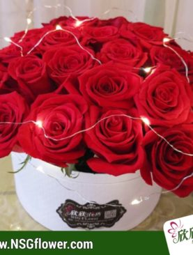 36 rosas roja en caja redonda con luz