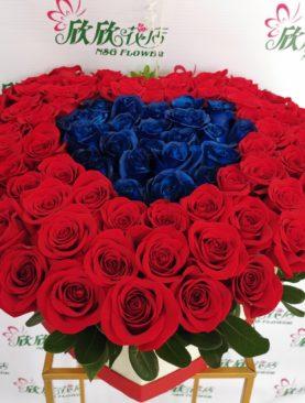 Amor para Siempre 99 rosas