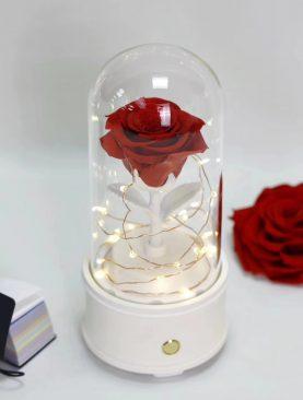 Rosa Preservada con Bocina Bluetooth