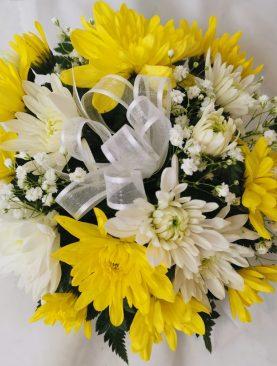 Cripta con Crisantemo