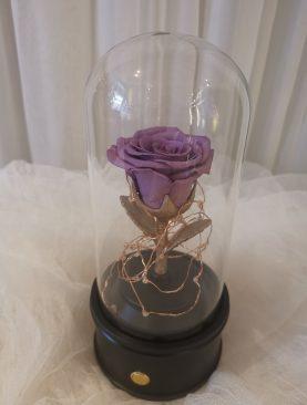 Rosa preservada lila en bocina bluetooth