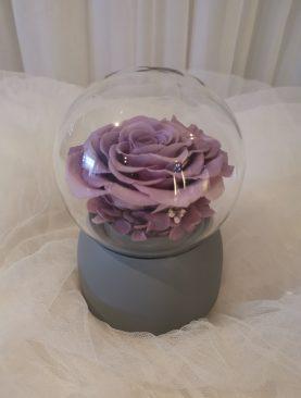 Caja musical con rosa preservada lila