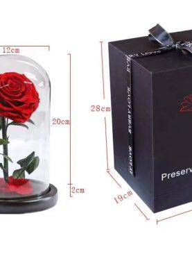 Rosa Preservada Principito rojo corazon